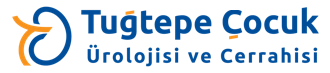 logo-img